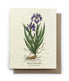 Iris Plantable Seed Card