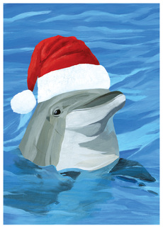Festive Dolphin