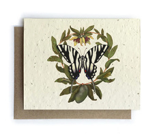 Zebra Butterfly & Paw Paw Plantable Seed Card