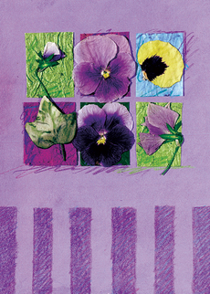 Pansy Petals Mother